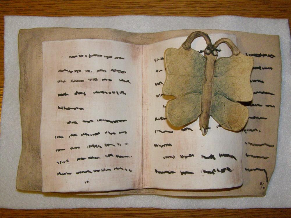 OBRÁZEK : papilio_bibliothecalis_2012.jpg